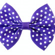 Violet ribbon bow. — Stock Photo