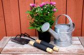 Narzędzia ogrodnicze. — Zdjęcie stockowe
