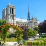 Notre Dame of Paris. — Stock Photo