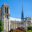 Notre Dame of Paris. — Stock Photo #30793985