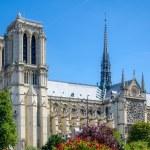 Notre Dame of Paris. — Stock Photo #30793985