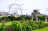 Tuileries garden side, Paris — Stock Photo