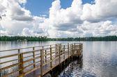 Lake shore. — Stock Photo