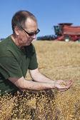 Boer bedrijf vlas zaden — Stockfoto