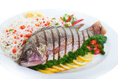 Grilled Tilapia — Stock Photo
