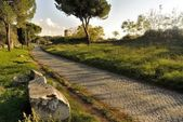 Appia Antica Street — Stock Photo