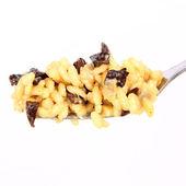 Risotto z grzybami na widelec — Zdjęcie stockowe