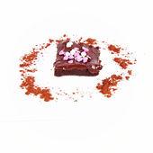 Brownie — Stock fotografie