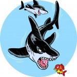 Cartoon shark — Stock Vector #17372941