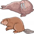 Walrus and beaver — Stock Vector