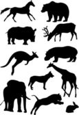 Silhouettes of mammal — Stock Vector