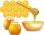 Honey — Stock Vector