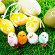 Easter eggs and chickens — Stock Photo
