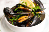 Mussel with white wine sauce — Stock Photo