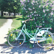 Old Green bicycle — Stock Photo