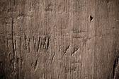 Textura de fundo de parede de madeira — Foto Stock