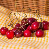 Fresh cherries — Stockfoto
