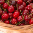 Fresh cherries — Lizenzfreies Foto
