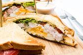 チキン サンドイッチ — ストック写真