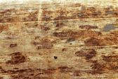 Vintage Wood brown texture — Stock Photo