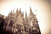 Gotiska katedralen i köln, tyskland — Stockfoto
