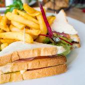 Smörgås med kyckling — Stockfoto