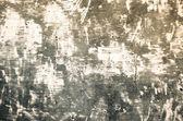 Gran fondo moho — Foto de Stock