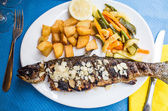Grilled fish and vegetables — Stock Photo