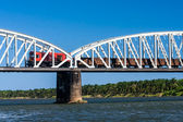 Train on the bridge — Stock Photo