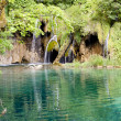 Wild nature - Plitvice lakes, Croatia - Foto Stock