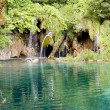 Wild nature - Plitvice lakes, Croatia - Stock Photo