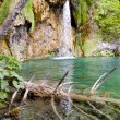 Waterfall - Plitvice lakes. — Stock Photo #12888443