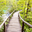 Wooden pathway - Plitvice lakes, Croatia - Stock Photo