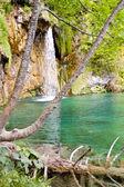 Plitvice lakes - Croatia, Europe. — Stock Photo