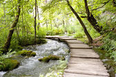 Plitvice lakes - wooden pathway. — Stock Photo