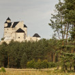 Stock Photo: Bobolice Castle, Poland - Silesia Region.
