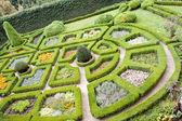 Vista aérea en jardín de belleza en pieskowa skala. — Foto de Stock