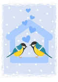 Two tits in bird feeder — Stock Vector