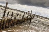Wooden waterbreaks - Rewal Poland. — Stock Photo