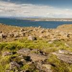 Icelandic landscape - Stakksfjordur Fjord. — Stock Photo #14909325