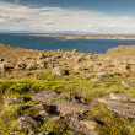 Icelandic landscape - Stakksfjordur Fjord. — Stock Photo
