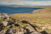 View on Stakksfjordur - Iceland — Stock Photo