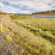 Route to westfjords - Iceland. — Stock Photo