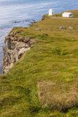 Cliffs on Latrabjarg - Iceland. — Stock Photo