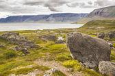 View on Arnarfjordur fjord - Iceland. — Stock Photo