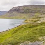 Clifs and Dynjandisvogur fjord - Iceland. — Stock Photo