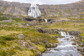 Dynjandi waterfall and rapid river - Iceland. — Stock Photo