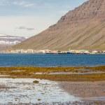 View on Isafjordur town - Iceland. — Stock Photo #18334577