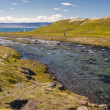 River in Unadsdalur village - Iceland, Westfjords. — 图库照片