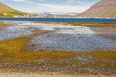 Isafjordur город - исландия. — Стоковое фото